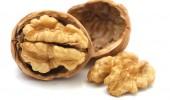 Arborele de nuc are multiple întrebuințări terapeutice